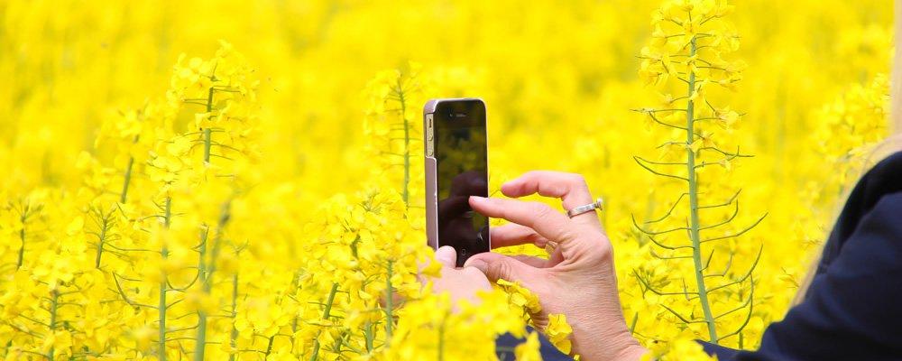 カメラアプリ使用イメージ